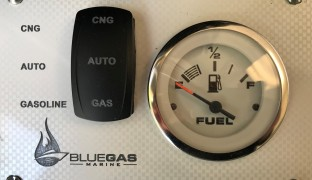 Gasoline Single Helm Control